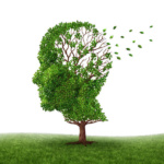 Shedding extra weight off the brain